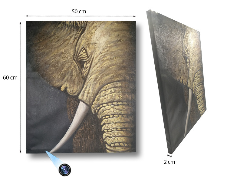 Elephant Oil Paint Spy Hidden Camera, 36 Hrs recording, 48 Hours - 1 750px