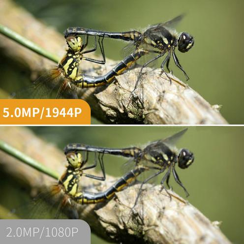 دوربین فوکوس اتوماتیک آندوسکوپی WIFI، 5.0MP، HD1994P، 3.5M14.2mm، 4pc LED، 2600mAh - 7