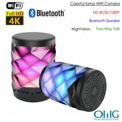 4K WIFI Bluetooth Speaker Lamp Camera with Two-way Talk