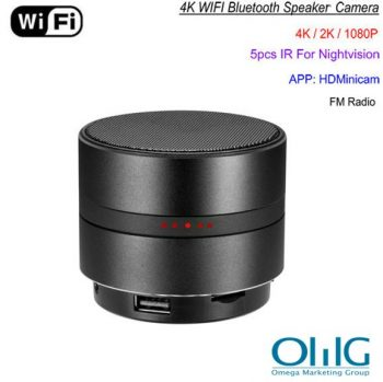 Netwerk WIFI Bluetooth Speaker Camera, Vidjo HD 4K, Max 128G SD Card