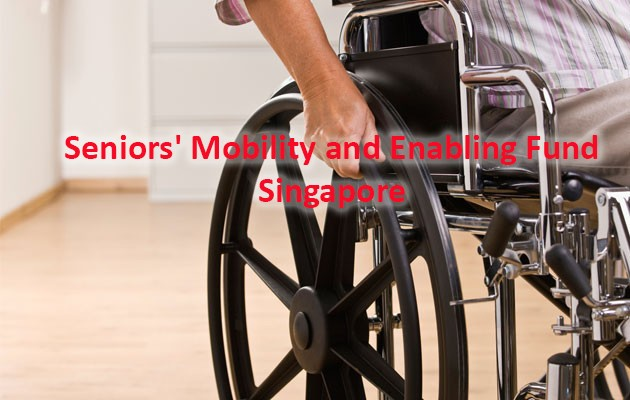 Mobility and Enabling Fund ng mga Nakatatanda (Singapore)