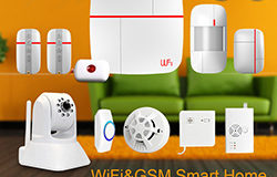 vCare-Smart-Home-Securitate-System-250x