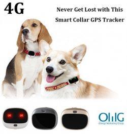 GPS037D - Mini asmeninis GPS sekiklis vyresnio amžiaus vaikų augintiniams (šunims katėms)