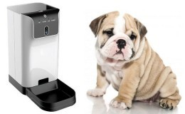HD Pet Feeder Camera - 2