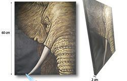 Kamera Tersembunyi Cat Elephant Paint Hidden, 36 Hrs recording, 48 Hours - 1 250px