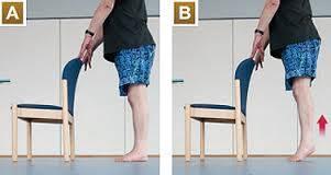 Fall prevention exercises for seniors - Heel raise