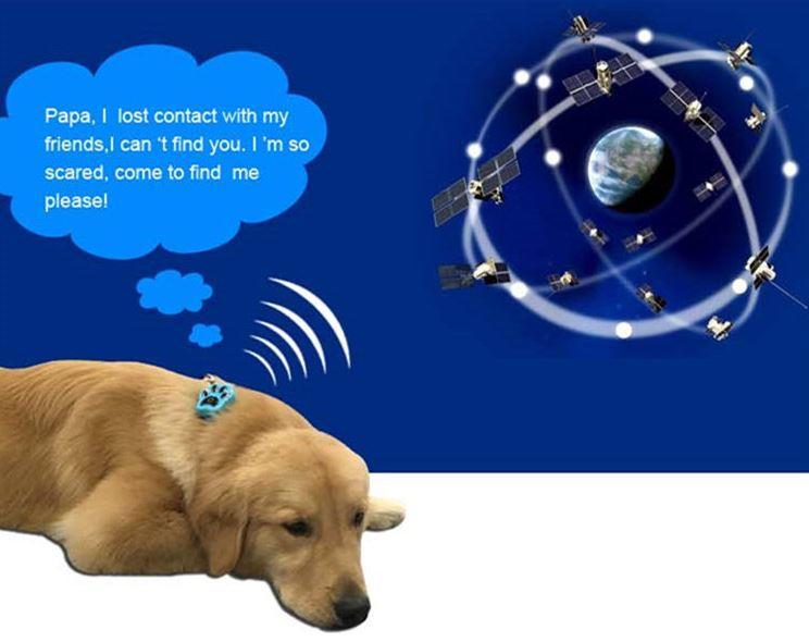 3G Pet GPS Tracker - GPS+AGPS+WIFI+inertial 5 fix positioning