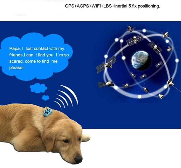 3G Pet GPS Tracker - GPS+AGPS+WIFI+inertial 5 fix positioning