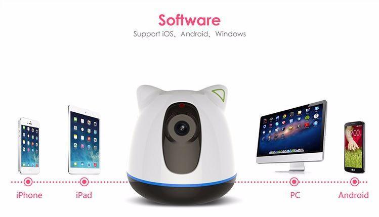 iBear - Baby - Älterer Sicherheitsmonitor IP Kamera CCTV - Software
