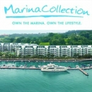 Mga Solusyon ng OMG - Client - BWC043 - Chang & Chang - Marina-Collection